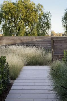 For a less formal look than the front path, a 5-foot-wide path is laid with 2.5-foot limestone pavers separated by 2-inch gravel joints. The gravel also aids drainage. | scott-lewis-vineyard-retreat-grasses-northern-california