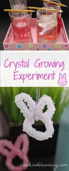easy science experiments for kids, spring science, growing crystals, preschool, kindergarten, elementary science, Easter science