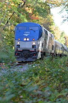 The Vermonter Amtrak train stops in Northampton with service between Washington, DC to St. Albans in Northern Vermont.