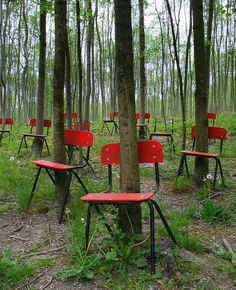 "Translation ""Poland these chair are here since 1939 took place at the wedding here, interrupted by the outbreak of war. Every year, people paint the red chairs - in memory of those events"""