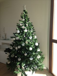 Natale 2016 Christmas Tree, Holiday Decor, Home Decor, Home, Teal Christmas Tree, Decoration Home, Room Decor, Xmas Trees, Christmas Trees