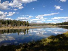 Hayden Valley in Yellowstone.