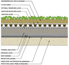 Green Roof Structure