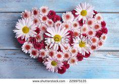 Beautiful flowers in heart shape on wooden background - stock photo