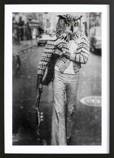 Owl Man als Gerahmtes Poster von John Keddie | JUNIQE