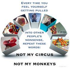 Not my Circus - Not my Monkeys