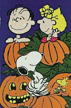 Linus Sally, Snoopy and, Woodstock
