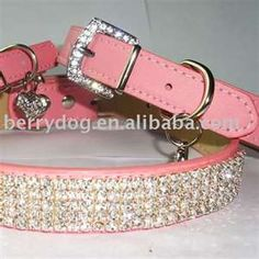 Blinged Dog collar must get!
