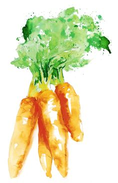 Food illustrations, for recipe magazine editorial
