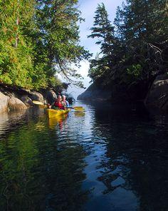 Kayaking British Columbia, Sea Kayaking With Killer Whales, Vancouver Island, BC