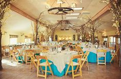 Blue and yellow theme reception