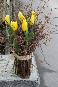 Feb 2020 - mit Tulpen ausgeliefert in Bigenthal delivered with tulips in Bigenthal Easter Flower Arrangements, Easter Flowers, Diy Flowers, Spring Flowers, Flower Decorations, Floral Arrangements, Bouquet Flowers, Vintage Flowers, Garden Types