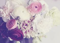 pretty flowers and filter via weekday carnival My Flower, Vintage Flowers, Pretty In Pink, Beautiful Flowers, Pastel Flowers, Color Of Life, Flower Photos, Decoration, Floral Wedding