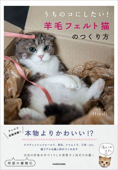 This is just beautiful book..you can make realistic needle felted cats(^-^)  Detail Condition : brand new Author : Hinali Publisher : Kadokawa Number of pages : 96p   I ship worldwide from Japan by air mail^^   Im selling other Japanese craft books, calendar of Shiba Inu and Parrots(Cockatiel, Budgies, Lovebird etc) and Japanese products (anime cartoon manga book of Attack on titan, Tokyo Ghoul, needle felted animals), Ghibli goods So please check my shop°˖✧◝(⁰▿⁰)◜✧˖° https://www.et...