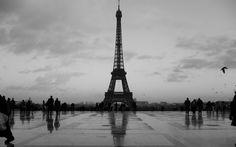 paris | Eiffel, Tower, Paris, monochrome - Wallpapersus.com