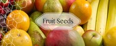 Buy Online Vegetable Seeds in India Flower Seeds Hybrid Herb Seeds India Herb Seeds, Garden Seeds, Seeds Online, Fruit Seeds, Organic Fruit, Flower Seeds, The Fresh, Health Care, Online Shopping