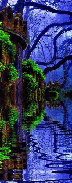 Deep cobalt blue and green moss in this frightening but stunning forest.