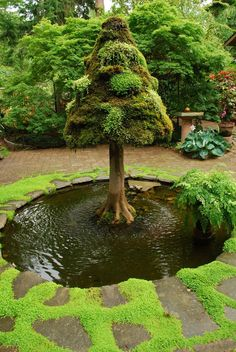 Garden water feature - Little and Lewis