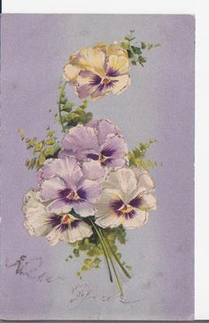 Pansies and maiden hair fern saying happy new year - a more innocent time.