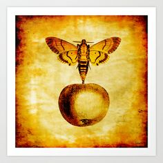 The butterfly and the golden apple Art Print by ganech - $16.64