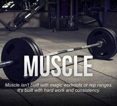 Want to live in a fitness lifestyle? Motivational quotes for fitness Fitness Workouts, Fitness Tips, Health Fitness, Arm Workouts, Funny Fitness, Fitness Humor, Health Exercise, Fitness Gear, Weight Lifting