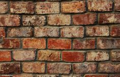 wall_of_bricks-other. Fireplace Wall, Colours, Bricks, Colorful, Inspiration, Living Room, Google Search, Animals, Home Decor