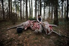 Week of Mar 1-7, 2014 An employee cleaned the model of a dead Triceratops at the Dinosaur Park in Kleinwelka near Bautzen, eastern Germany, on Wednesday for the park's postwinter reopening in April. (Arno Burgi/Agence France-Presse/Getty Images)