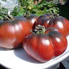 Solution Seeds Farm Heirloom Giant Black Krim Tomato Hybrid Seeds F2 Vegetables, 200 seeds, super sweet fruits Rare