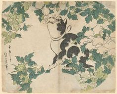 Cat and Peonies Japanese Edo Period Cats in Asian Art