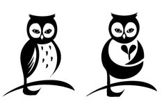 cute little owl tattoo idea