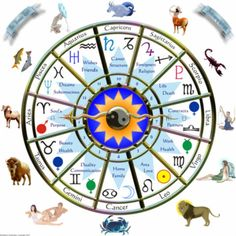 Astrology Palmistry chart