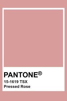 Pantone Colour Palettes, Pantone Color, Taupe Color Palettes, Pantone Swatches, Color Swatches, Colour Pallette, Colour Schemes, Paleta Pantone, Colour Board