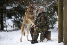 The Wolf Man! Werner Freund, German Wolfman, Feeds Wolves From His Mouth As Pack's 'Alpha Male' A former military man has devoted his life to the beautiful but dangerous wolves that inhabit his wolf park in Germany. Beautiful Creatures, Animals Beautiful, Unusual Animals, Unusual Pets, Exotic Animals, Animals And Pets, Cute Animals, Animals Photos, Wild Animals