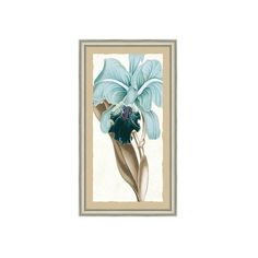 """Ballard Designs Eleganza Art  44"""" x 26"""" ($299) ❤ liked on Polyvore featuring home, home decor and wall art"""