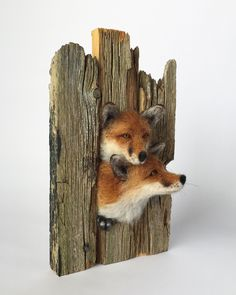 Needle Felted Fox Sculpture #needlefelted