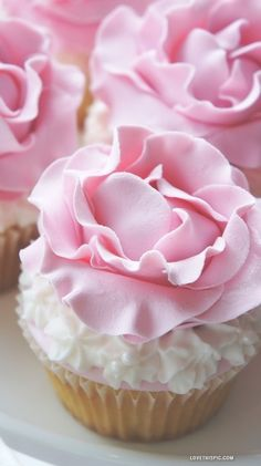 cherry blossom cupcakes (photo only)