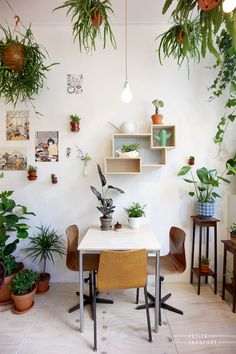 You actually belong to those groups rarely worry about glamour and also over-the-top designs for your home, then this is definitely your current cup of joe. Look at this content for 40 diy home decor ideas on budget. Hanging Plants, Indoor Plants, Indoor Outdoor, Indoor Garden, Garden Planters, Western Style, Living Vintage, Spring Home, Eclectic Decor