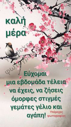 Good Afternoon, Good Morning, Greek Quotes, Beautiful, Mornings, Day, Texts, Gifs, Education