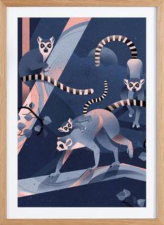 Katta as Framed Premium Poster by Dieter Braun   JUNIQE