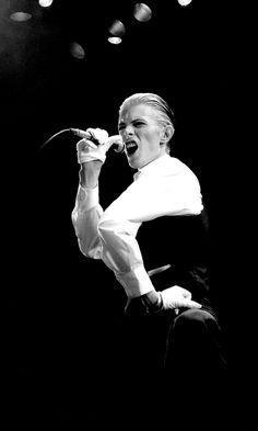 David Bowie - Philippe Auliac 1977