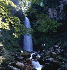 Amedaki Falls in Tottori City, Japan. Ehime, Tottori, Small Waterfall, Capital City, Waterfalls, Countryside, Around The Worlds, Mountain, Waves