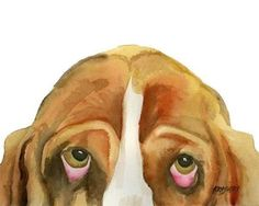 Basset Hound Art Print of Original Watercolor by dogartstudio