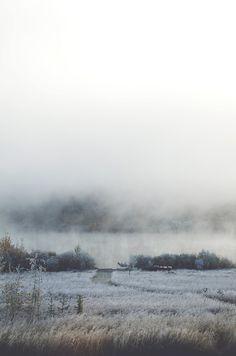 Tasha Marie / frosty mornings / Calgary Canada