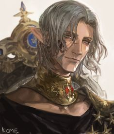 Twitter Final Fantasy Artwork, Final Fantasy Xiv, Character Portraits, Character Art, Elf Drawings, Elfen Fantasy, Pirate Art, Dragon Ball, Guy Pictures