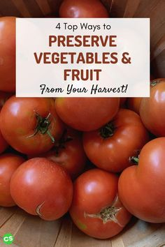 If you have a garden, you know there's always extra! Here are 4 ways to preserve vegetables and fruit from your garden to enjoy for the rest of the year. #preservevegetables #preservefruit #canning #homesteading #selfsufficient Self Sufficient Homestead, Love The Earth, Preserving Food, Sustainable Living, Food Storage, Preserves, Harvest, Fruit, Vegetables
