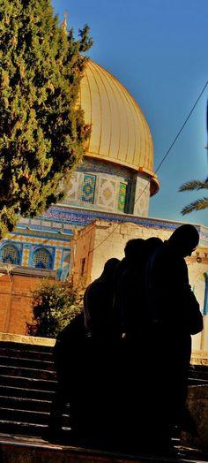 #Filistin #Palestine #Kudüs #Quds #jerusalem #namaz