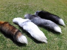 The 4 Fox Tails Side view 1 by MilkyFoxWhiskers on deviantART Fox Tails, Side View, Trees To Plant, Deviantart, Plants, Image, Tree Planting, Plant, Planets