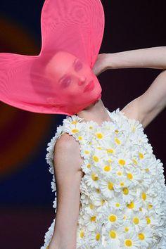 LA CARABA EN BICICLETA...: EL PICAFLOR... DE LAS PASARELAS Prada, Spring Summer, Fashion Details, Daisy, Bows, Style Inspiration, Model, Pattern, Outfits