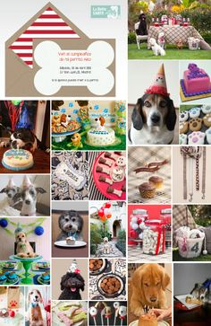www.LaBelleCarte.com    Birthday Online invitations, Birthday online cards, ideas for birthday, birthday dog, party dog, pets    For More Info Visit: www.LaBelleCarte.com/en
