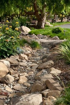 the line of dark rocks creates a very serene gravel garden/dry creek.I am going to be putting in a dry creek bed in my backyard at the end off my down spout where all of the mulch always washes away.I already have all of the rock to put in place.